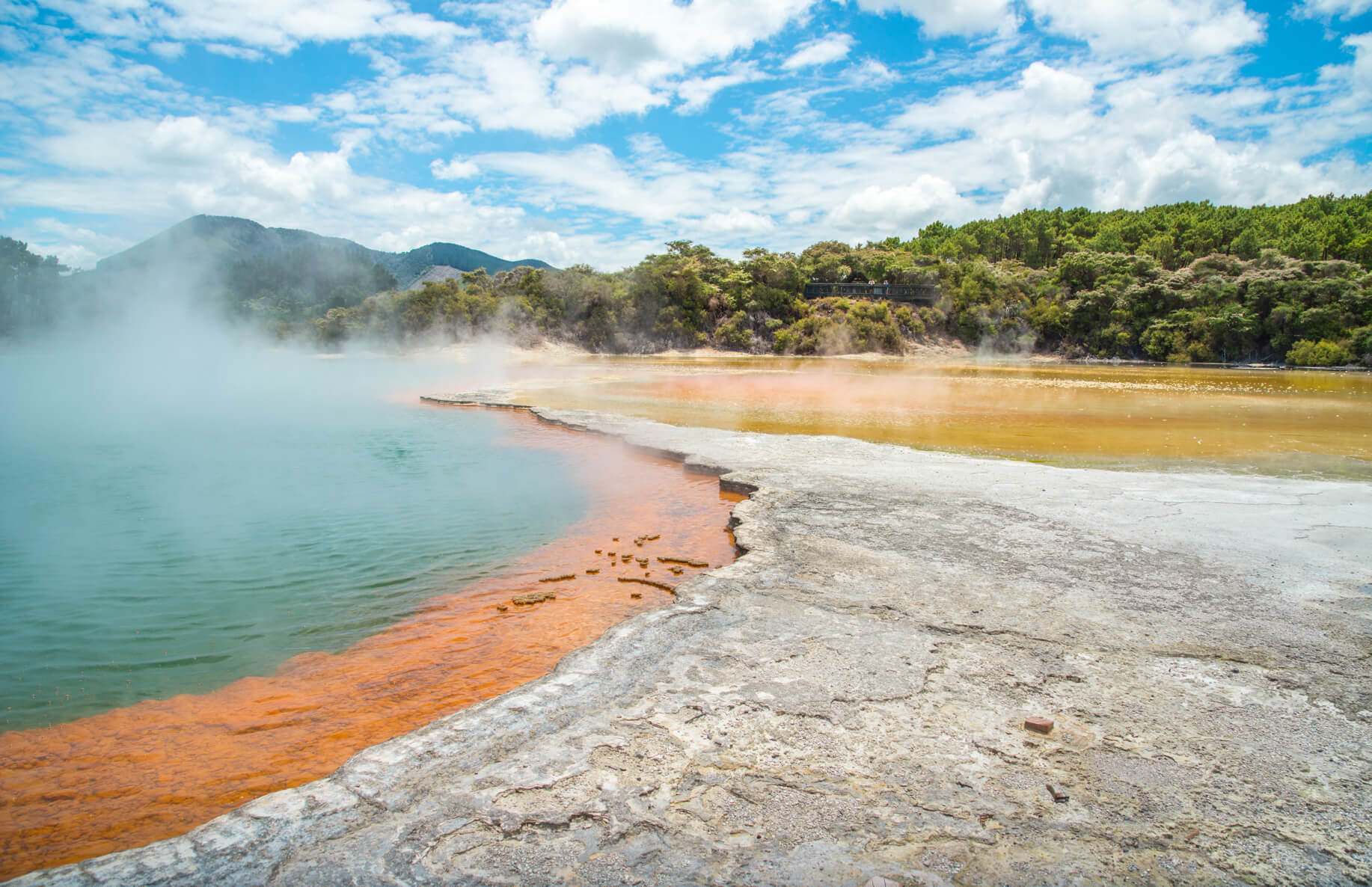 Natural hot springs of New Zealand under a sunny sky.