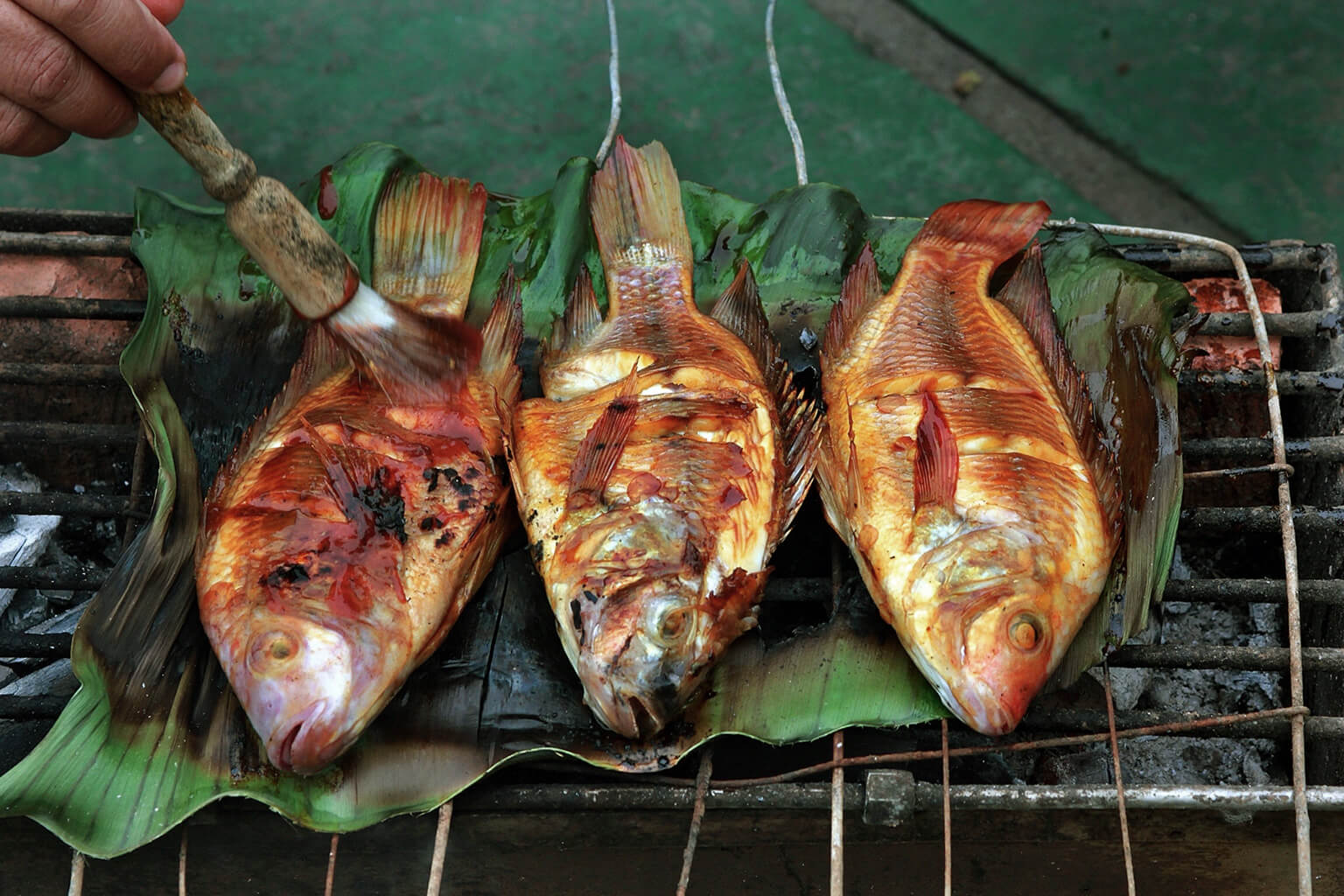 Three whole fished freshly grilled in banana leaves.
