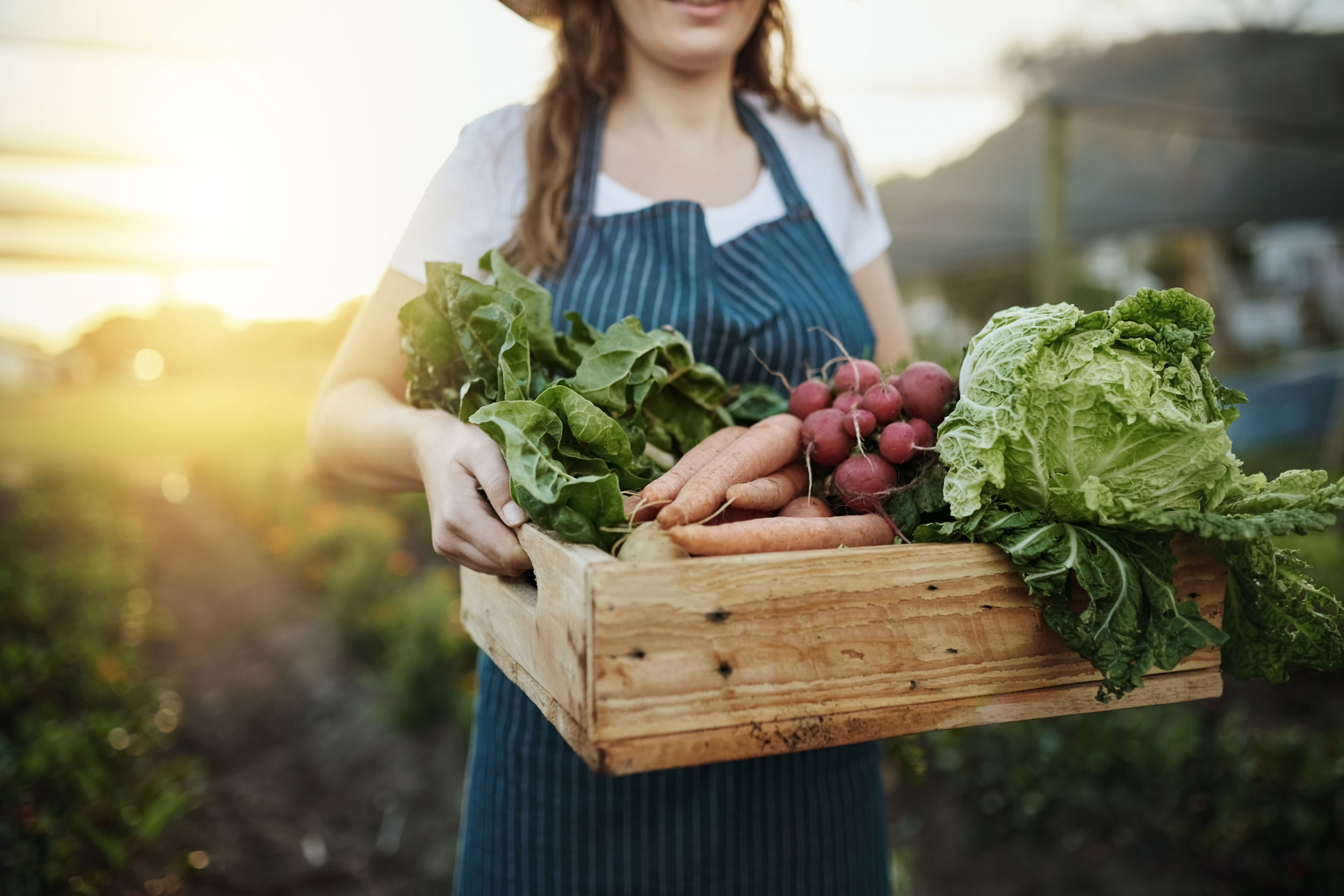 A woman carrying a wooden box of carrots, lettuce and other freshly picked vegetables.