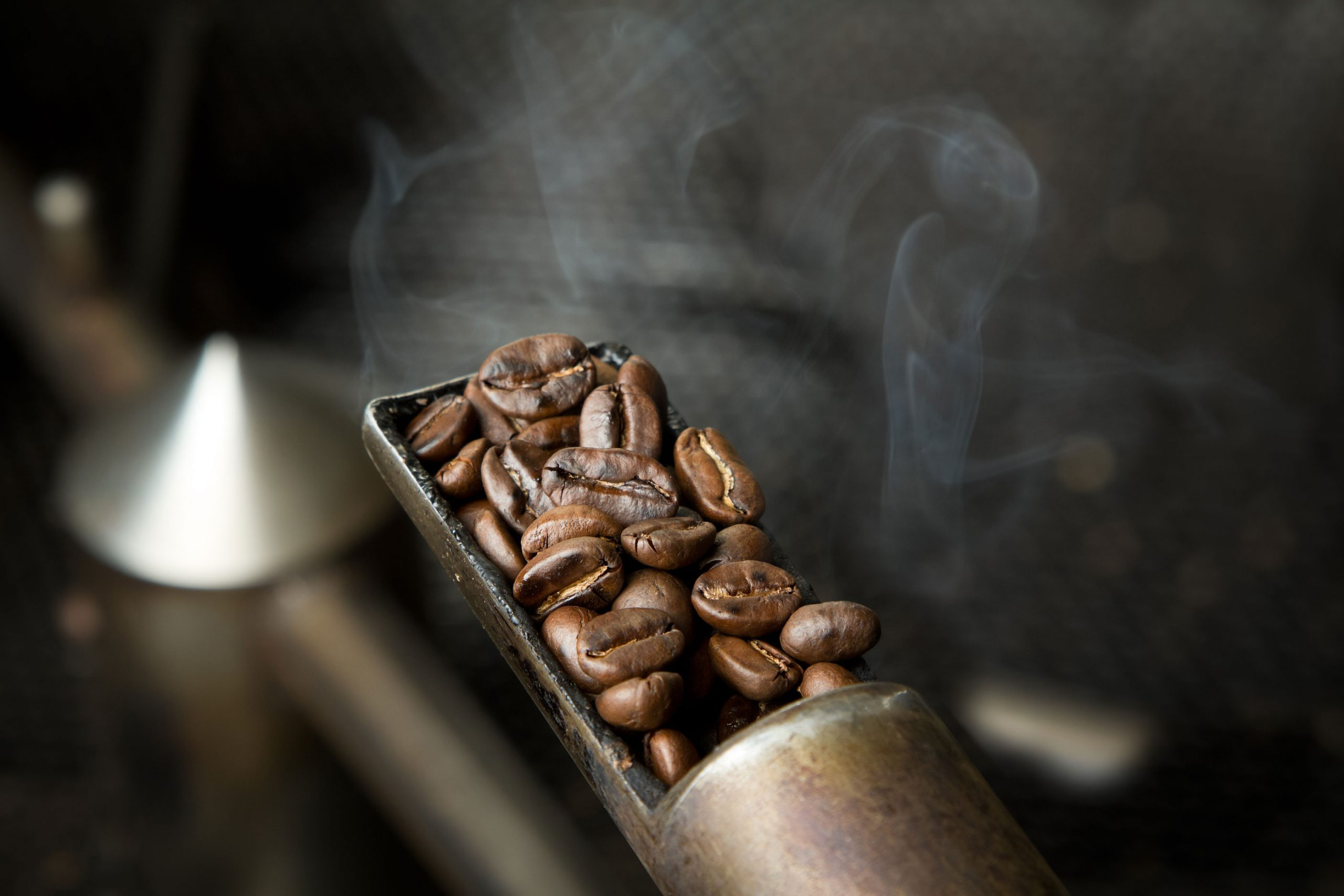 A small scoop of freshly roasted coffee beans.