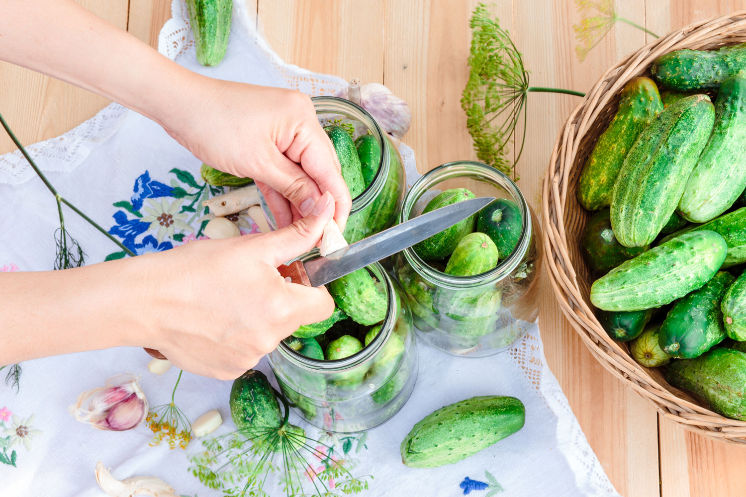 Short, thick cucumbers placed in glass jars waiting to be pickled with ginger and garlic.