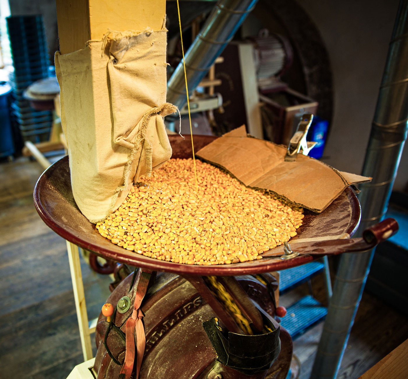 A bag of grain poured into a metal grain mill grinder.