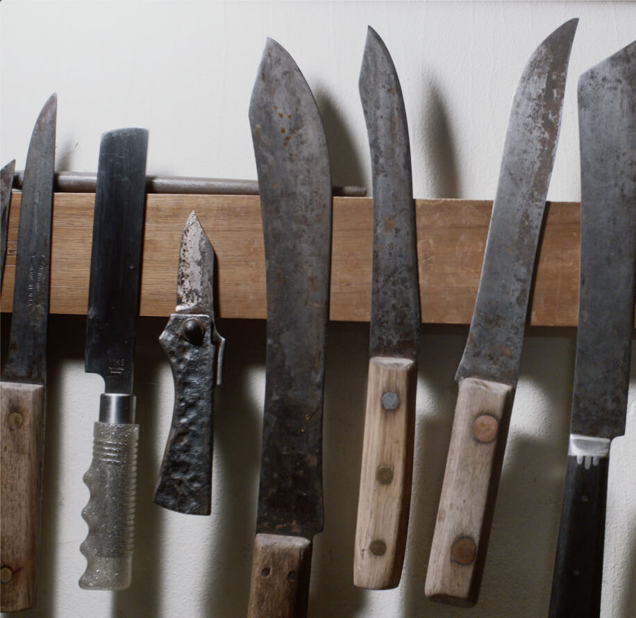 A variety of knives displayed on the wall.