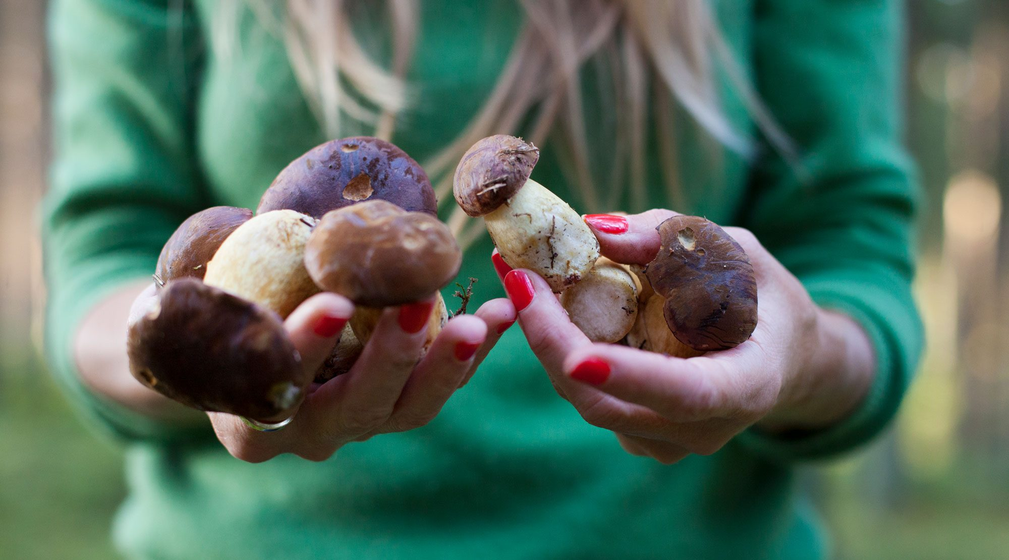 A person holding a handful of mushrooms.