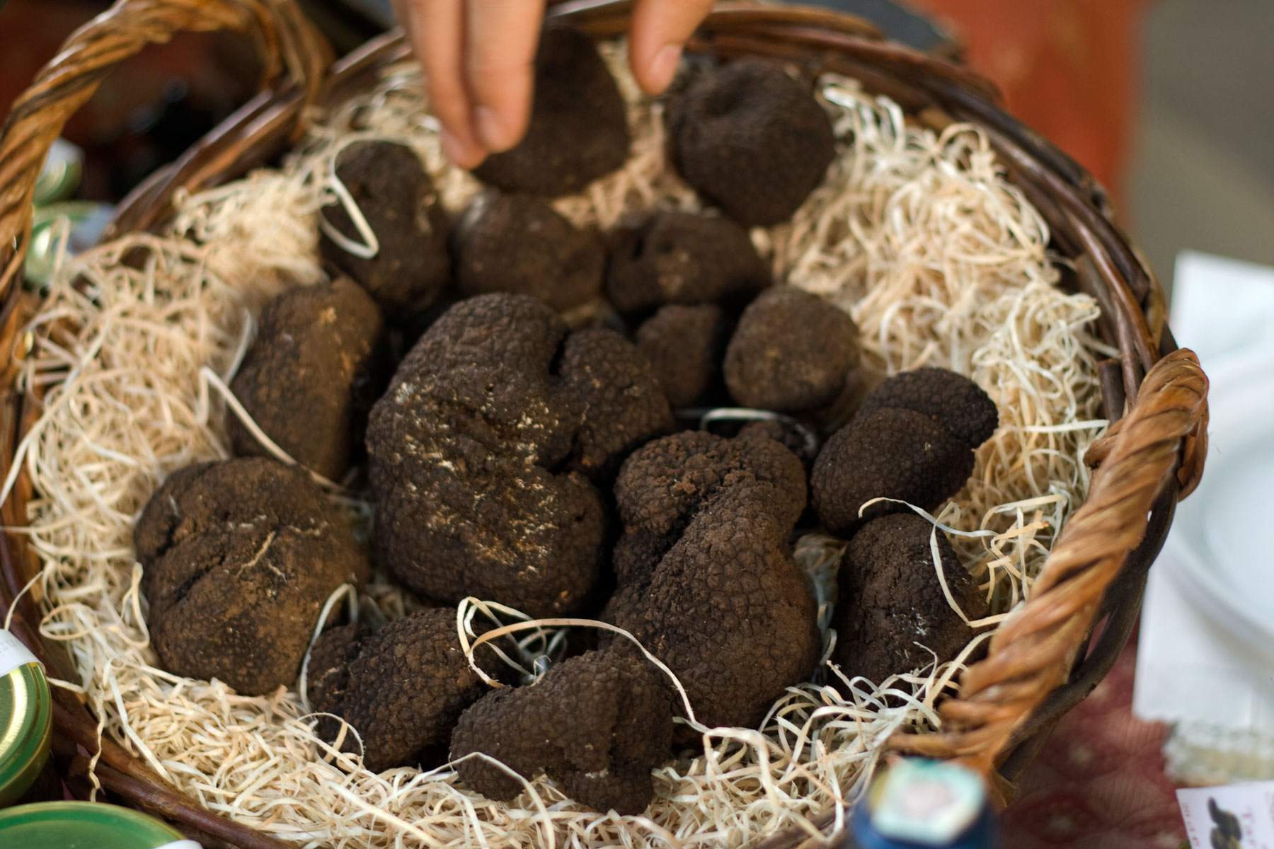 A small basket filled with black truffle mushrooms.