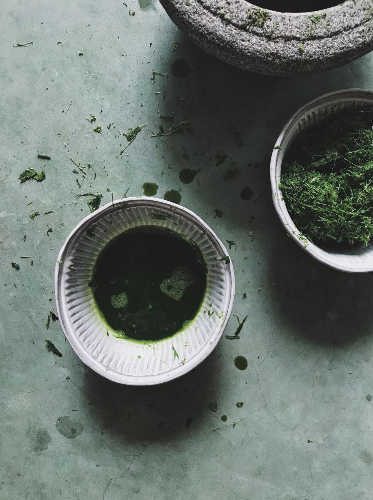 A ceramic dish holding a soft green liquid.