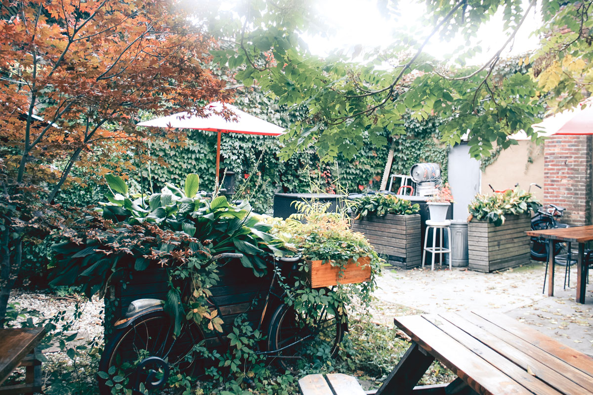 A patio with lush foliage, seating and bikes.