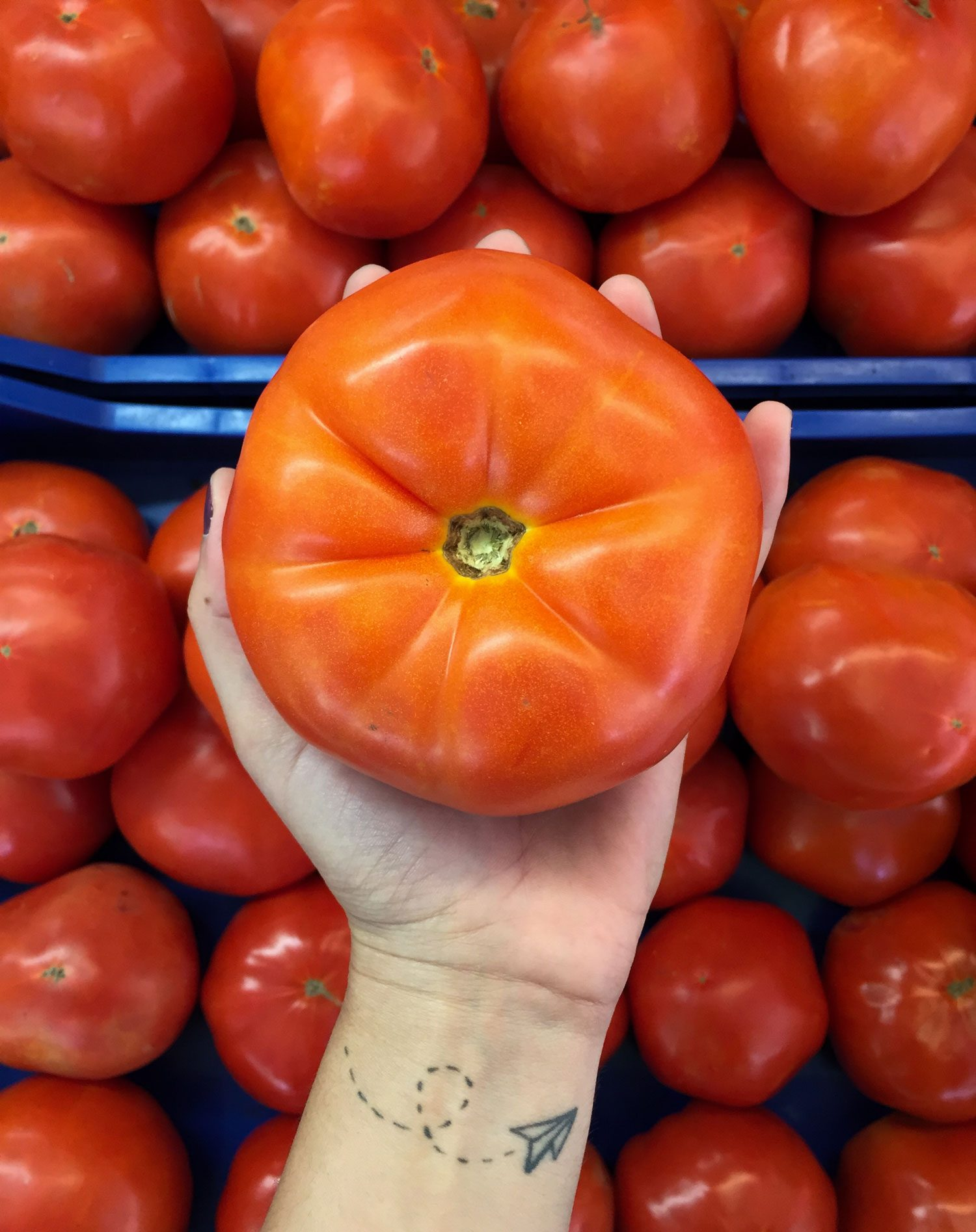 A person grasping a large, red tomato.