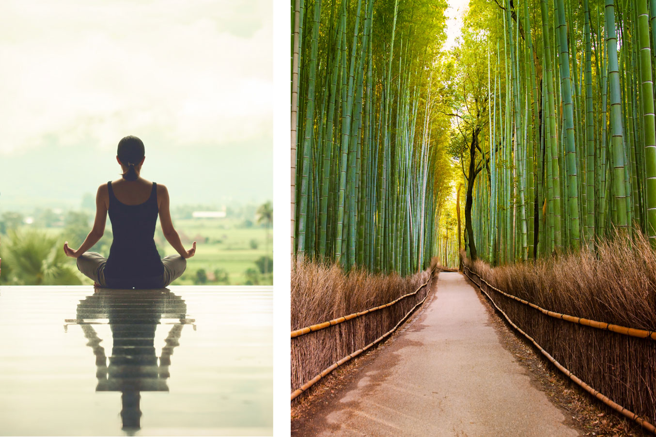 A person peacefully meditating in the lotus position next to a clean, clear path through endless bamboo.