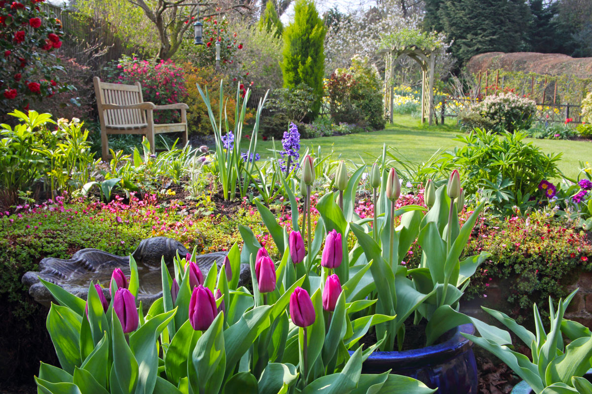 A beautiful, flower-filled garden.