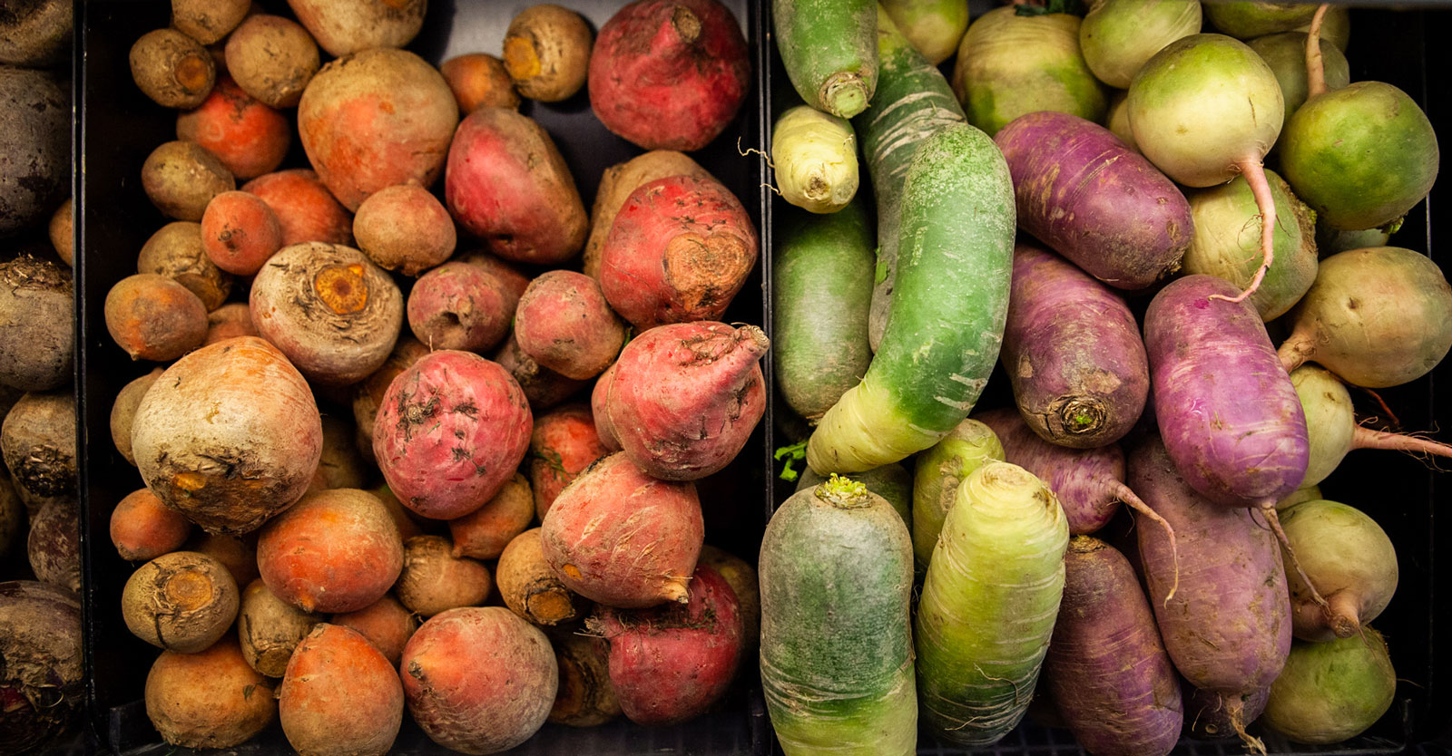 A colorful array of different types of potatoes.
