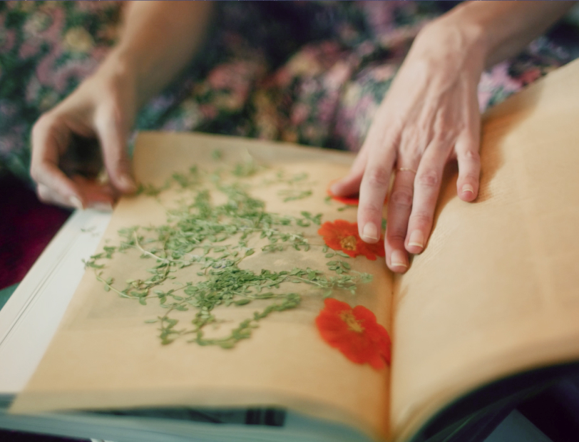 Loria Stern pressing flowers with a book.