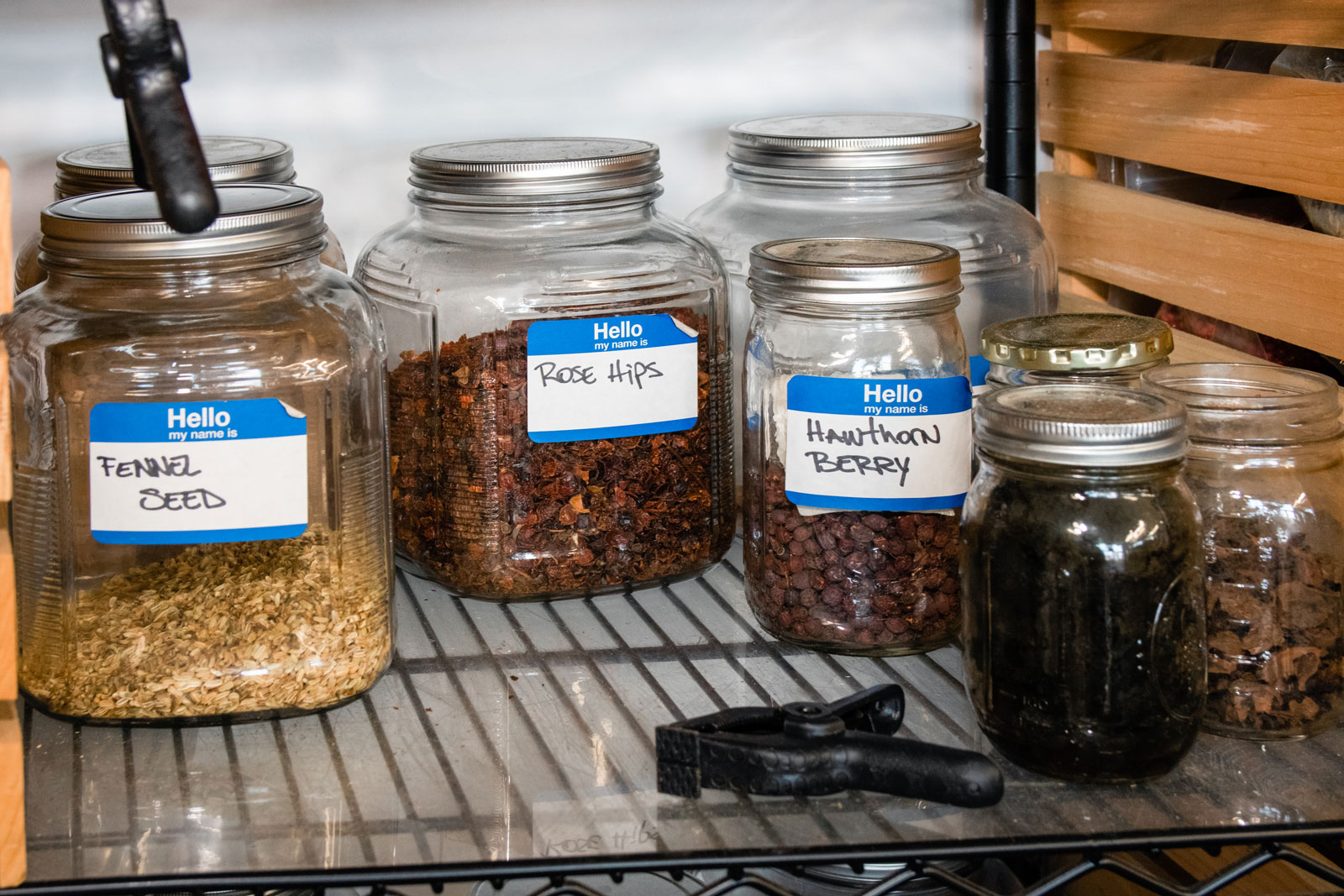 Glass jars filled with different herbs used for distilling.